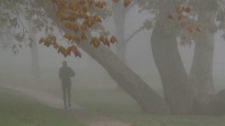 Smog bieganie układ oddechowy