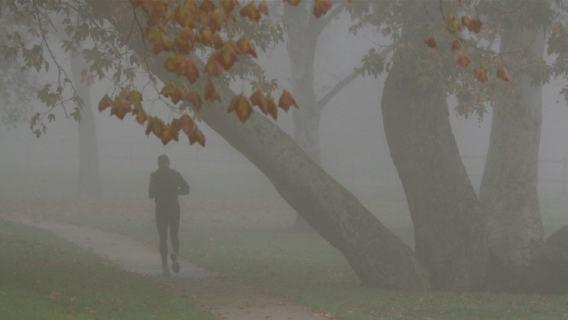 Smog bieganie komunikat